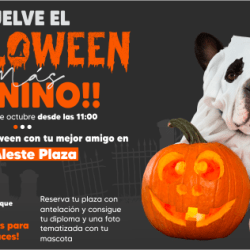 halloween canino