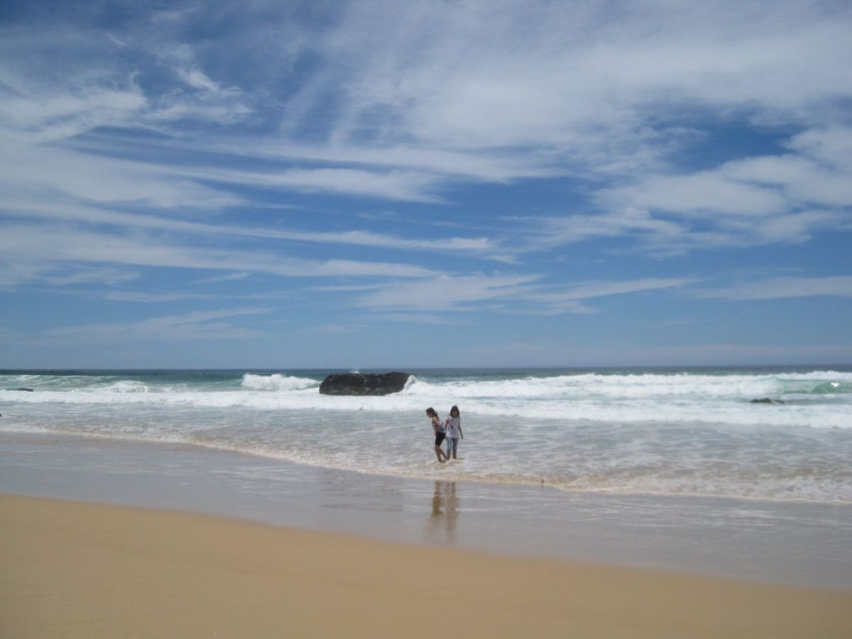 Playas, bosques y canguros en Coffs Harbour