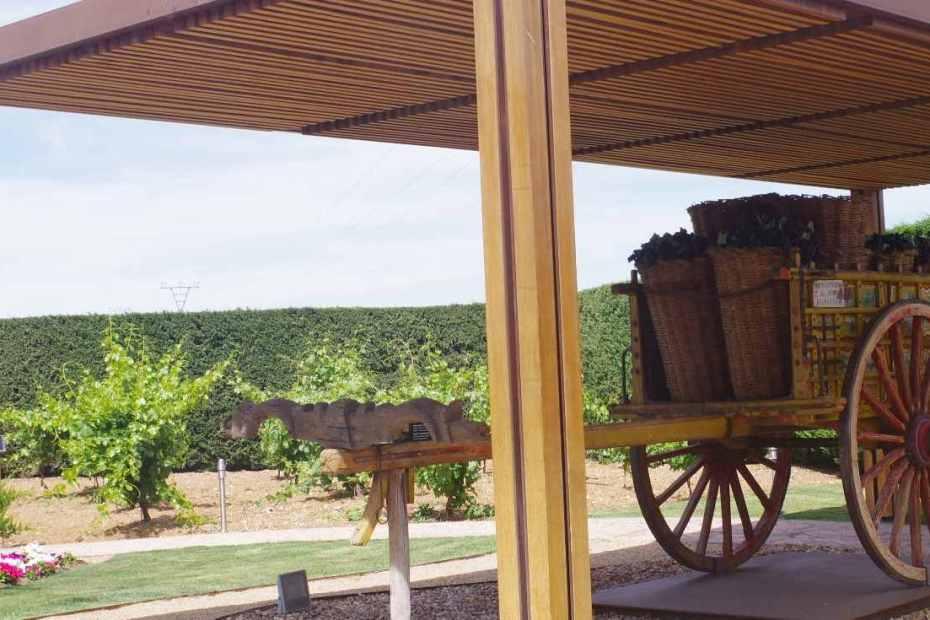 Museo del Vino Toro Pagos del Rey
