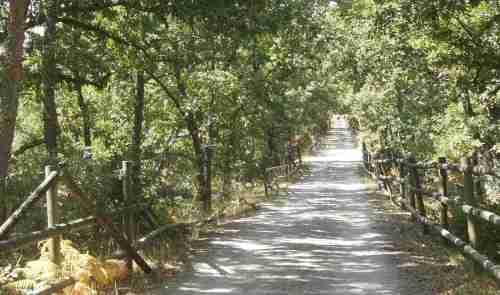 Vía Verde Ferrocarril Minero