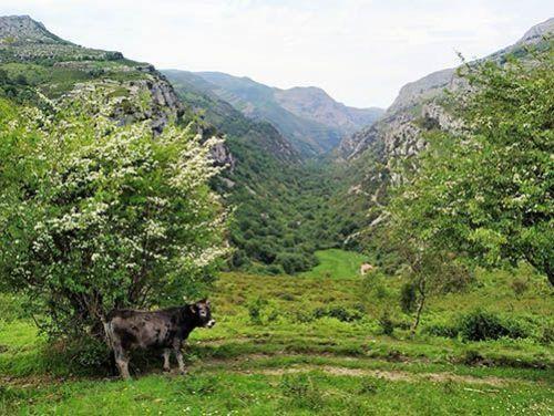 Parque Nacional Collados del Asón en el Valle de Soba