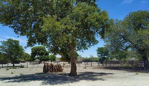 Franja de Caprivi, Namibia