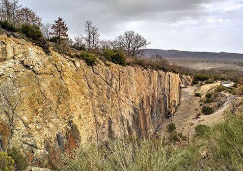 Árboles fósiles, Montaña palentina