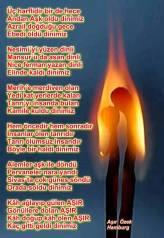 Devrimci Aleviler Birliği DAB Alevi Kızılbaş Bektaşi pir sultan cem hz Ali 12 imam semah Feramuz Şah Acar 1424413_10151850068871429_97934232_n