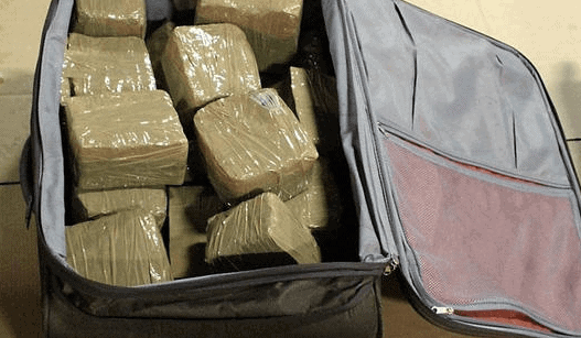 Alevo's early funding by a narcotics trafficker