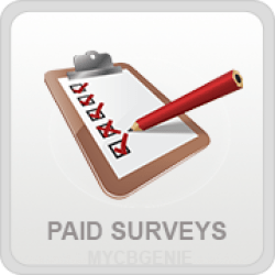 Paid Surveys