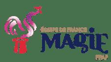 logo équipe de france de magie ffap