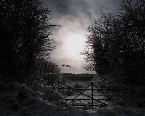 Snow and gate