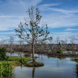 Angkor Lakes