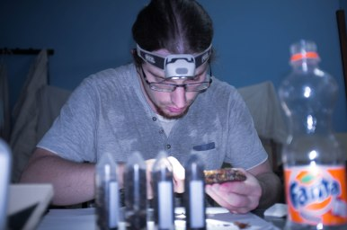 Dissecting brood to count Varroa mites. Burkina Faso Picture: A. Aebi