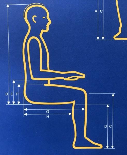 IBM-ergonomics-theory