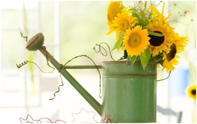 Alexandra Michelle Photography- Burnside Sunflower Farm-12