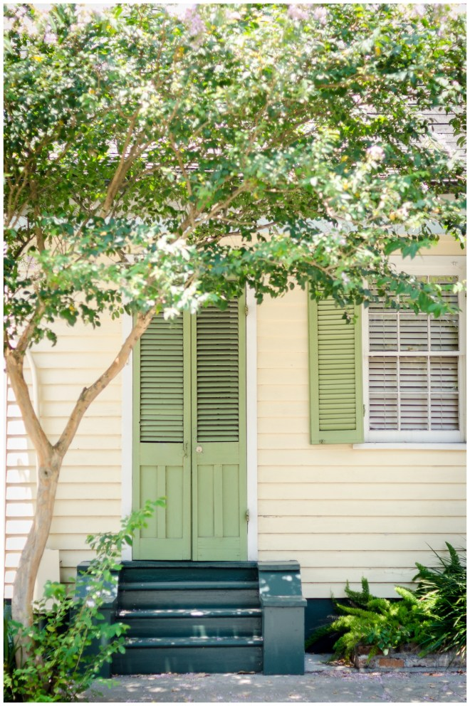 Alexandra Michelle Photography - New Orleans 15-125_s