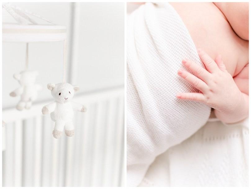 Alexandra Michelle Photography - 2019 - Newborn Portraits - Richmond Virginia - Puckette-8