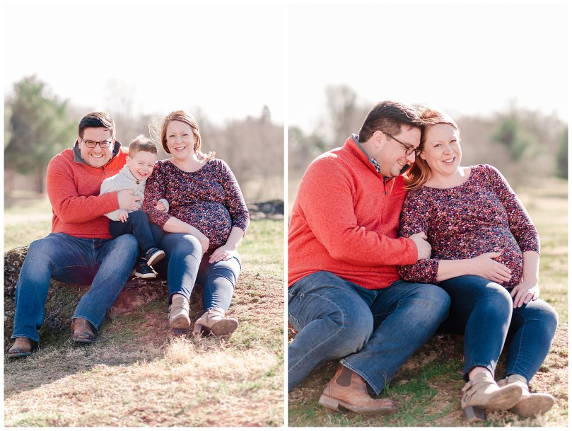Alexandra Michelle Photography - Leesburg Virginia - Family - Maternity Portraits - Ida Lee Park - Spring 2019 - Perez-1