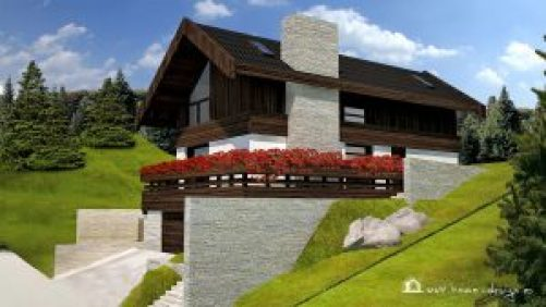 proiect-casa-vacanta-1