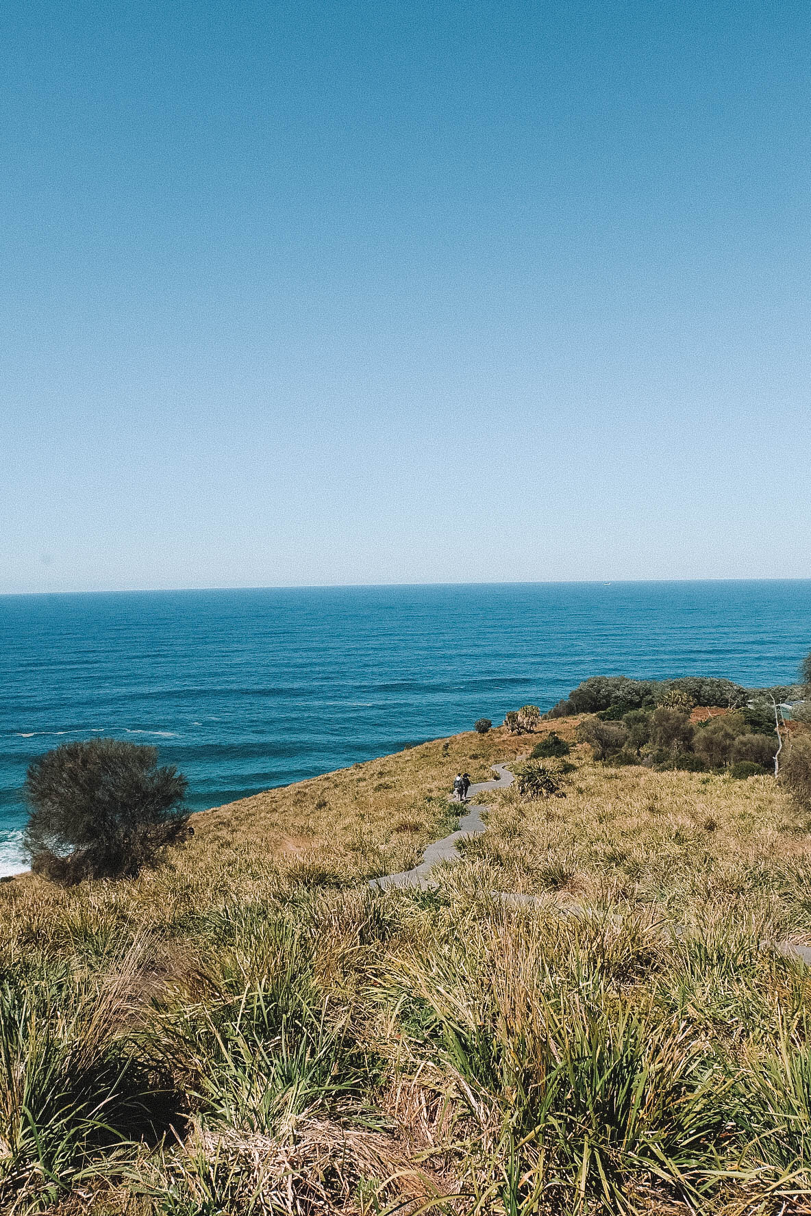 Sydney's Royal National Park Walk