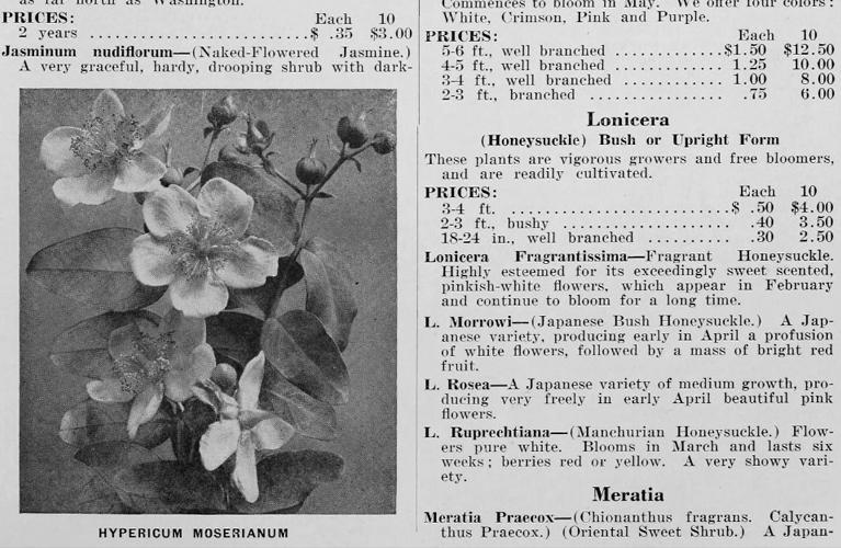 Fruitlands   Catalogue Example