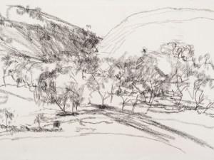 Drawing by Sallie Moffatt 'Locus 9'