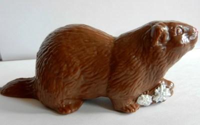 Une nouvelle chocolaterie à Modane