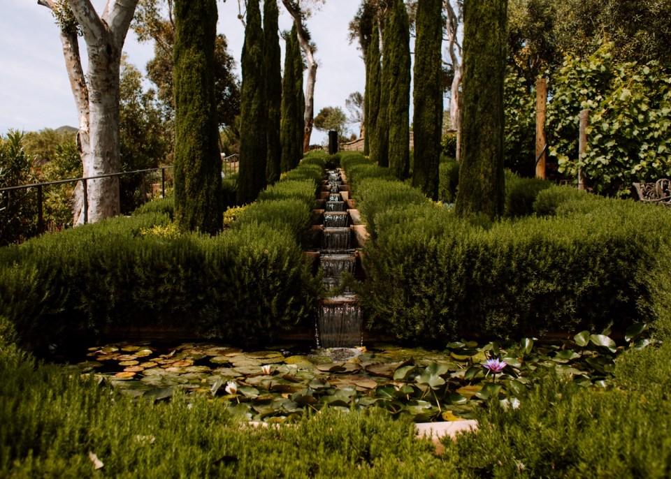 california wedding venue with Italian cypress