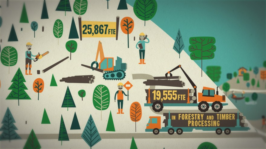 Forestry Stills_00004