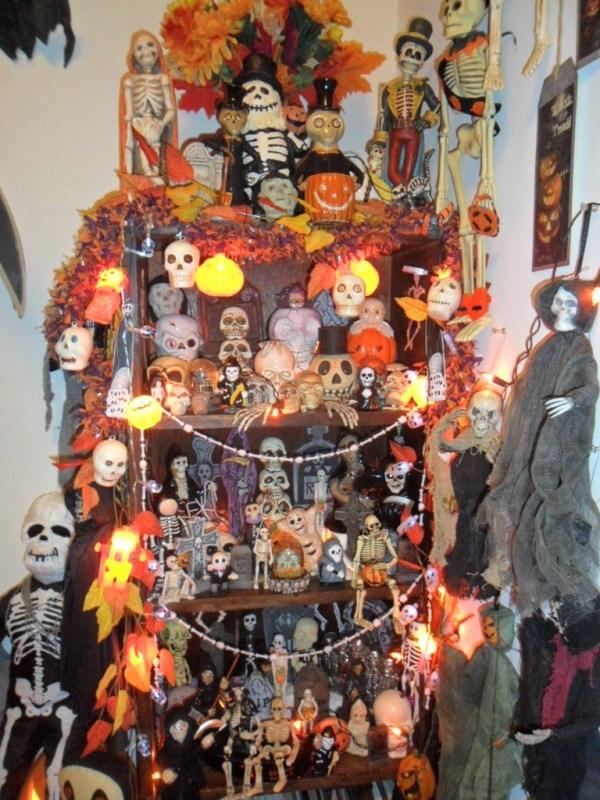 H skeleton shelves