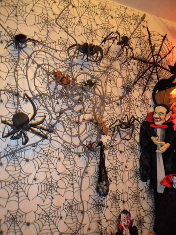 H spider web
