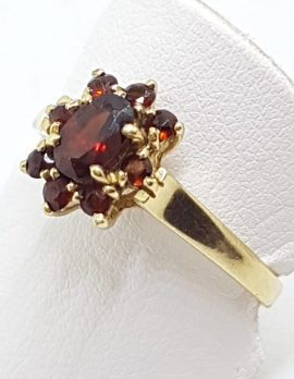 9ct Yellow Gold Oval Cluster Garnet Ring