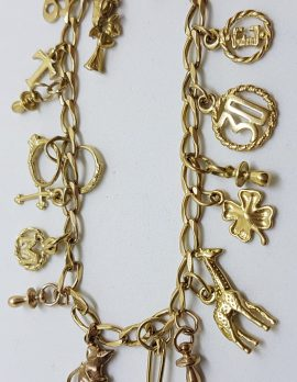 9ct Yellow Gold Charm Bracelet - 16 Charms