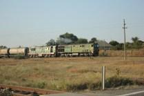 Die wenigen Züge hier fahren nur mit 40KM/H weil öfter mal Kühe auf den Gleisen rumstehen.