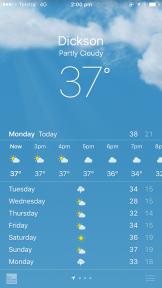 Canberra summer