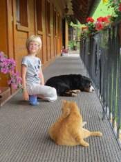 Gastkind Maja mit Kater Momo und Hund Mira