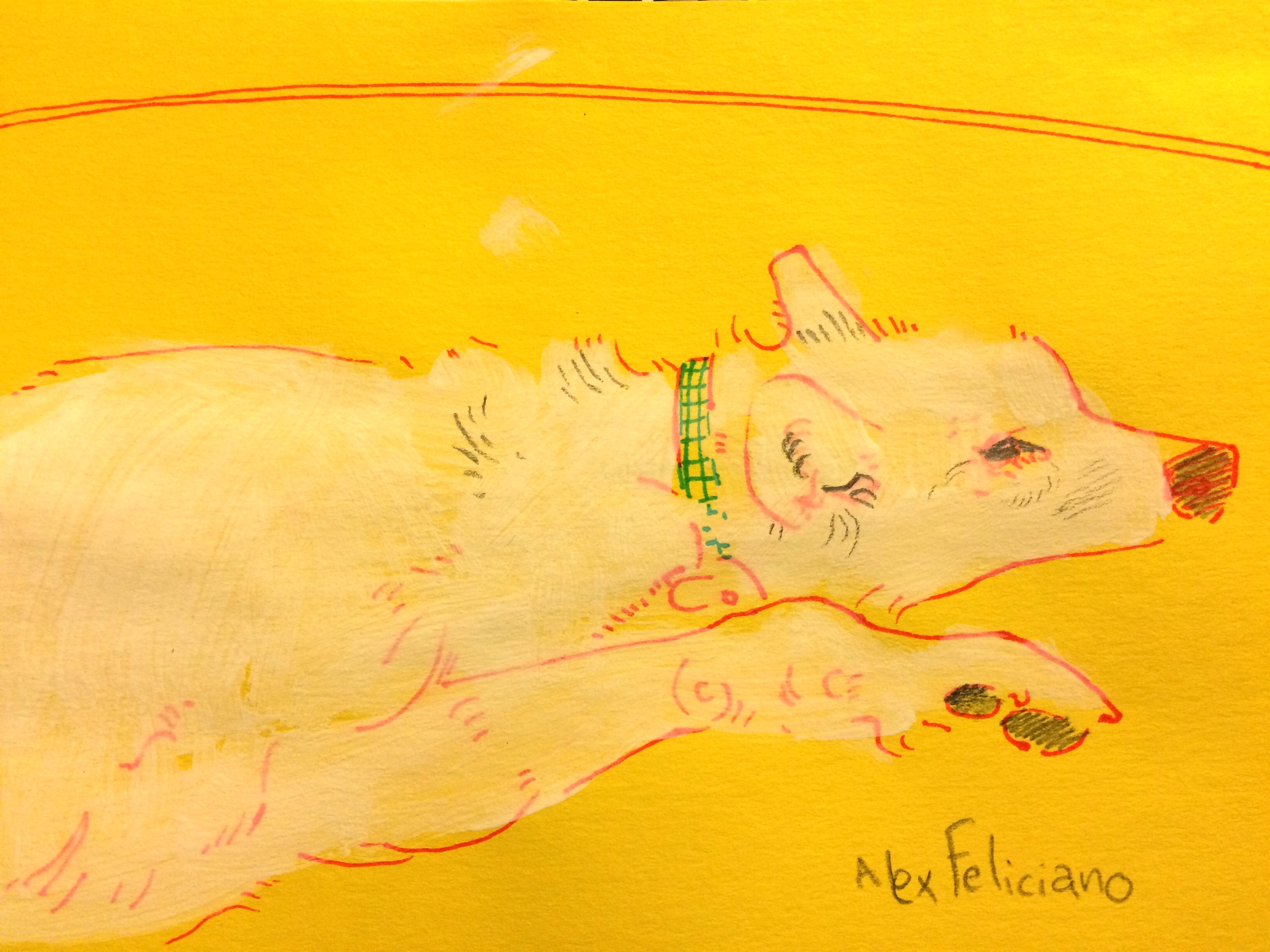 Maggie on Yellow is now in the FaceBook shop.
