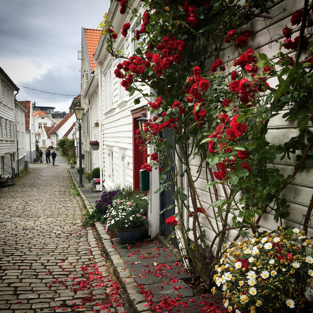 the best things to do in Stavanger