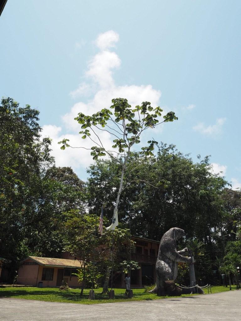 outside the Sloth Sanctuary near Puerto Limon