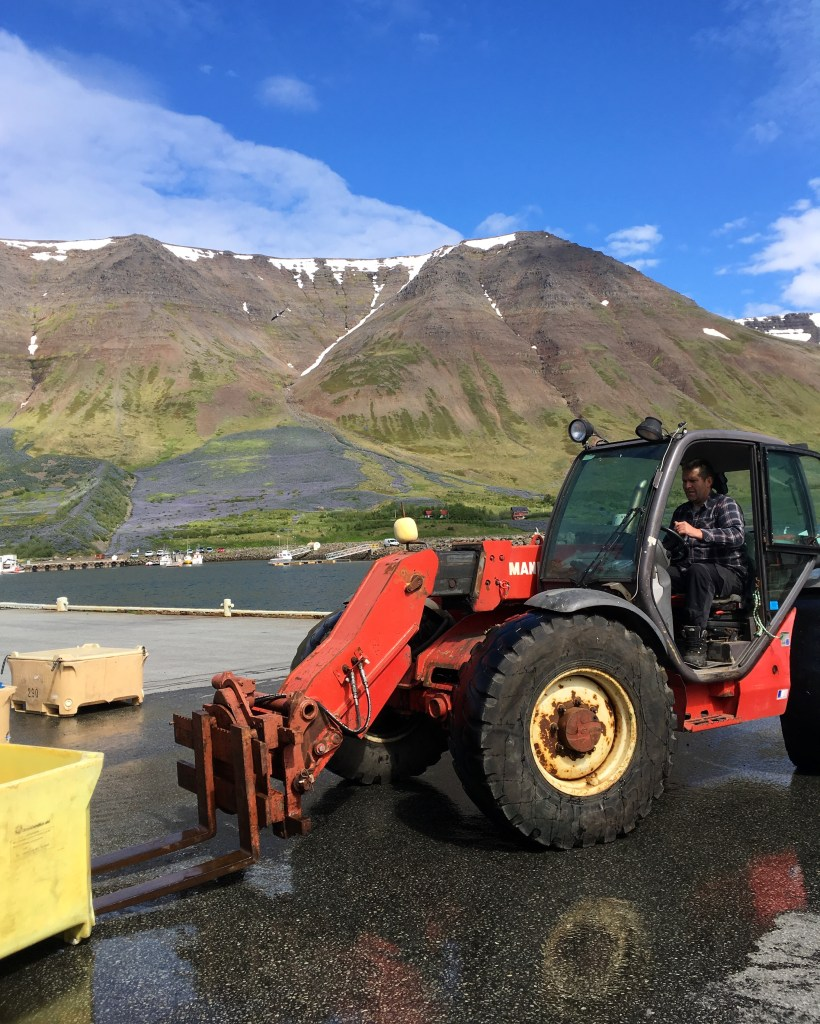 tractor in a fishing village in the Westfjords of Iceland
