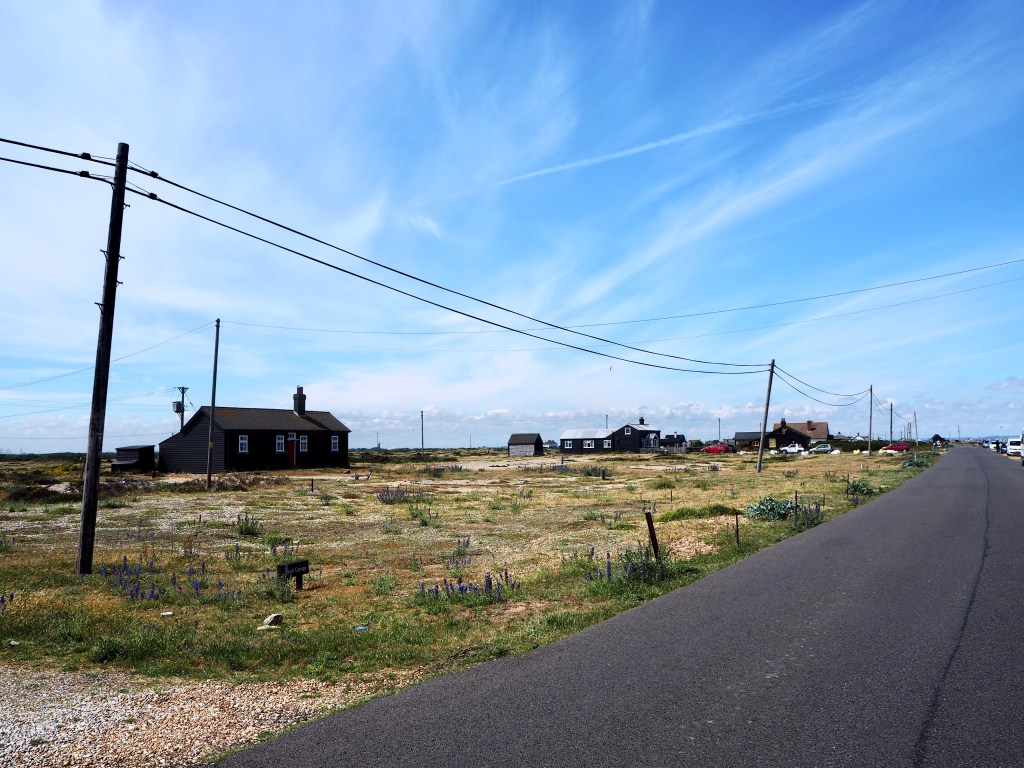 a day at Dungeness
