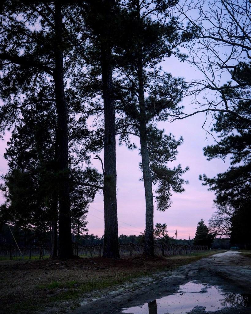 Riverton at sunset