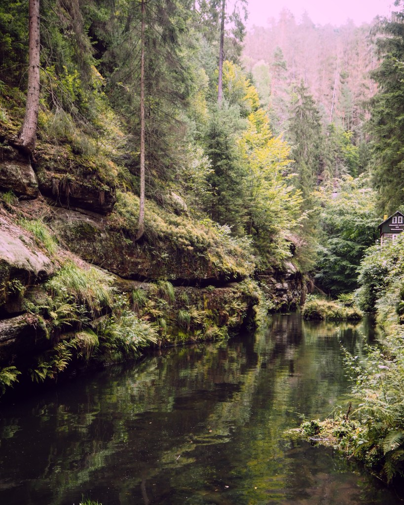 the Edmund Gorge in Bohemian Switzerland National Park