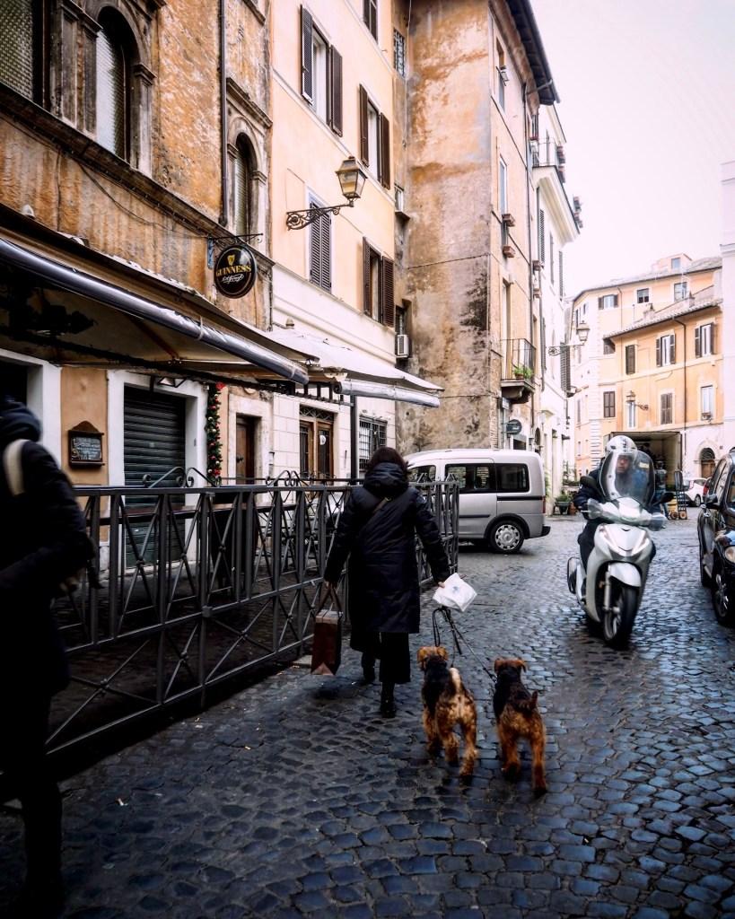 walking the dogs in Trastevere