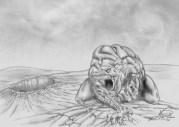 """illustrazione per il libro di Carlo Menzinger """"Jacopo Flammer nella terra dei Suricati"""""""