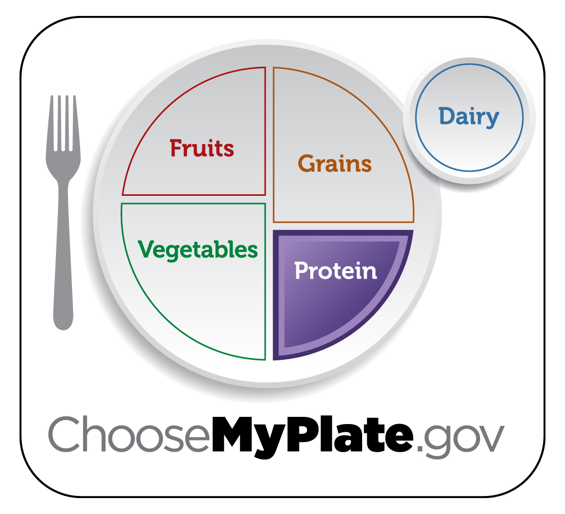 Choosemyplate Protein Food Group