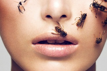 bees on models face