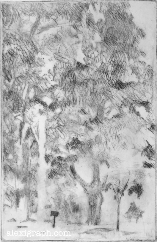 Etching of trees