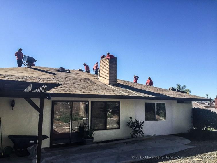 Der Abrisstrupp auf unserem Dach.