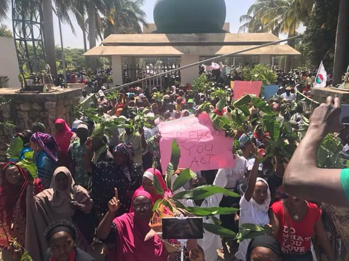 Hundreds of Kaduna state teachers embark on protest over plan to sack teachers who failed competency exams, destroy properties in the process (video)