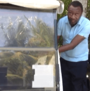 Femi Otedola shows off his customized Golf cart (video)