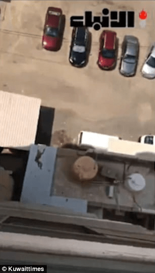 Woman who filmed her housemaid as she cried for help before falling from a seventh-floor balcony has been jailed (video)