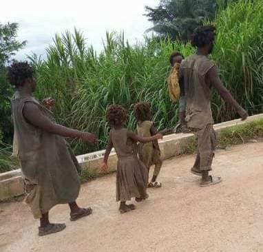 Remember the inseparable family of 5 battling mental illness in Cross River? The state government is rehabilitating them
